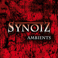 Official artwork for the Synoiz album Ambients